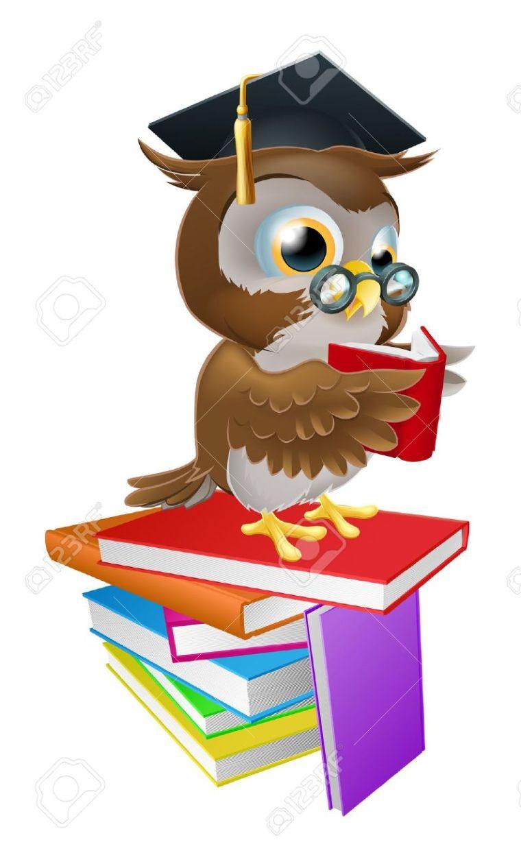 17682856-Une-illustration-d-un-hibou-sage-sur-une-pile-de-livres-de-lecture-portant-des-lunettes-et-un-chapea-Banque-d'images