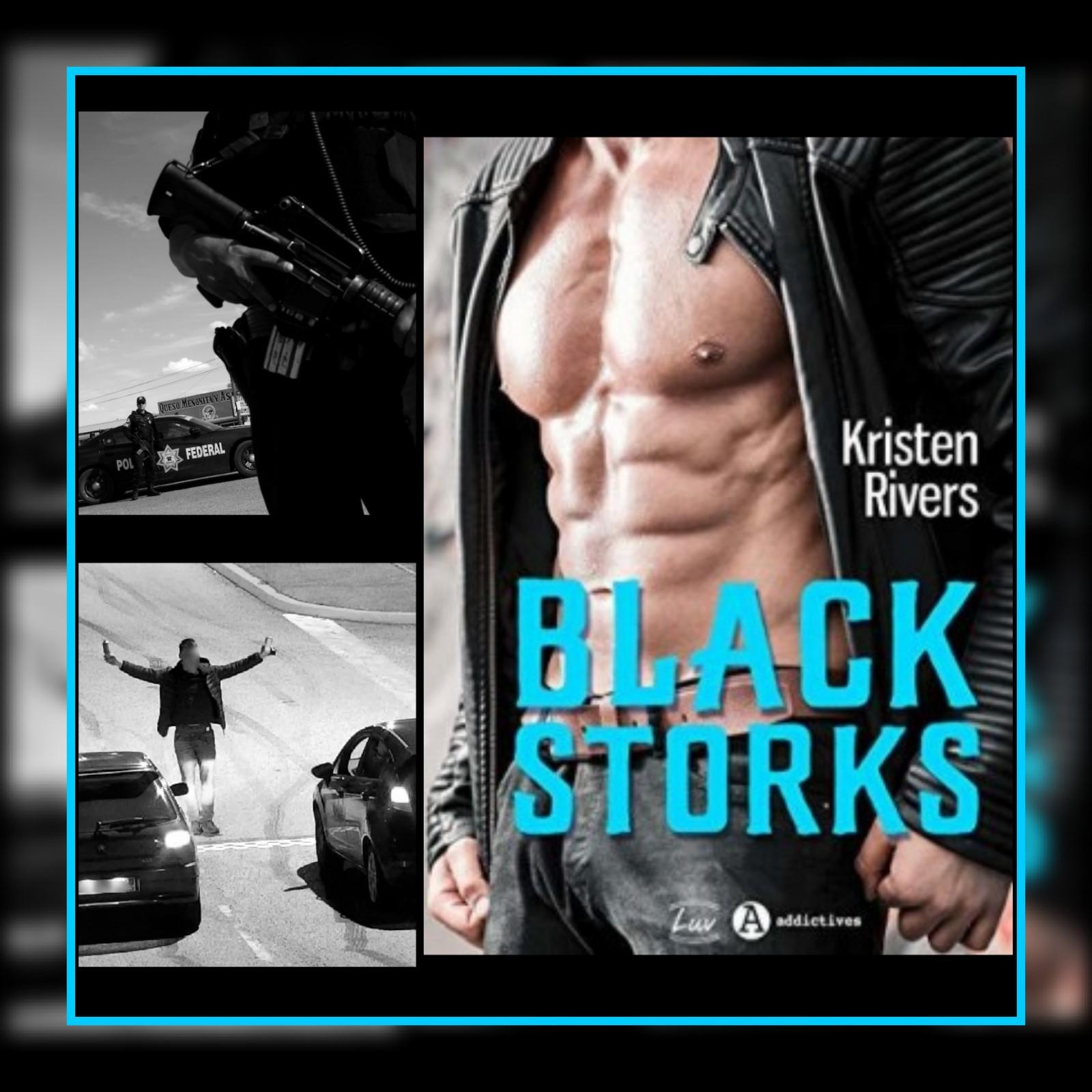 MONTAGE BLACK STORKS